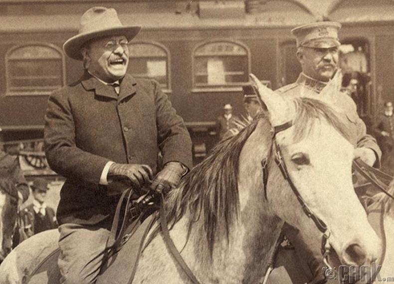 Теодор Рузвельт (1858 - 1919)
