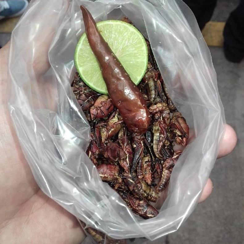 Chapulines — Мексик