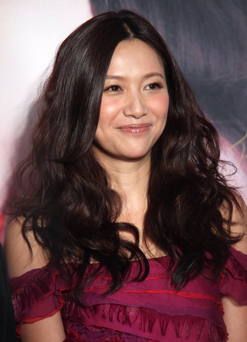 Сюй Цзинлэй (Xu Jinglei), 46 нас