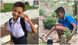 12 настай Тайланд хүү ээж аавынхаа ачийг ингэж хариулжээ!