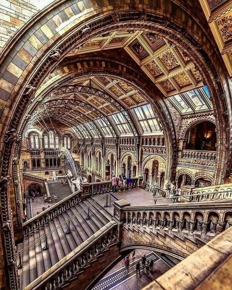 Байгалийн түүхийн музей, Лондон