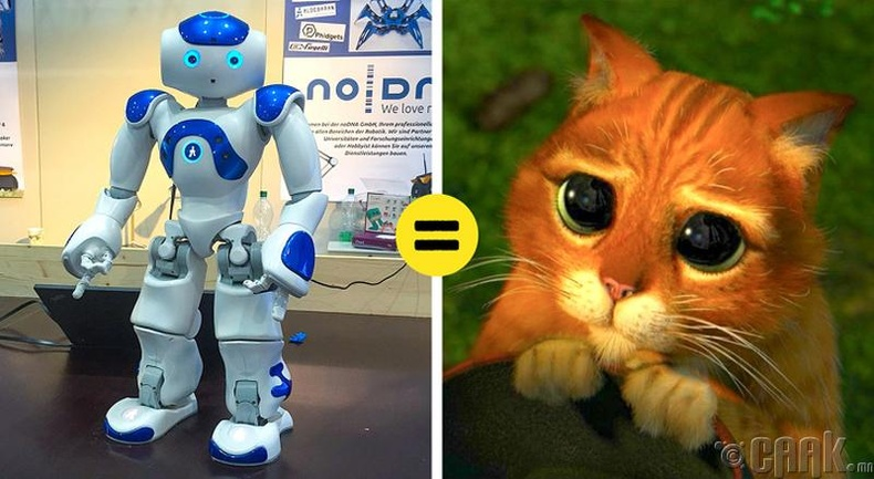Хүмүүсийг залилдаг робот