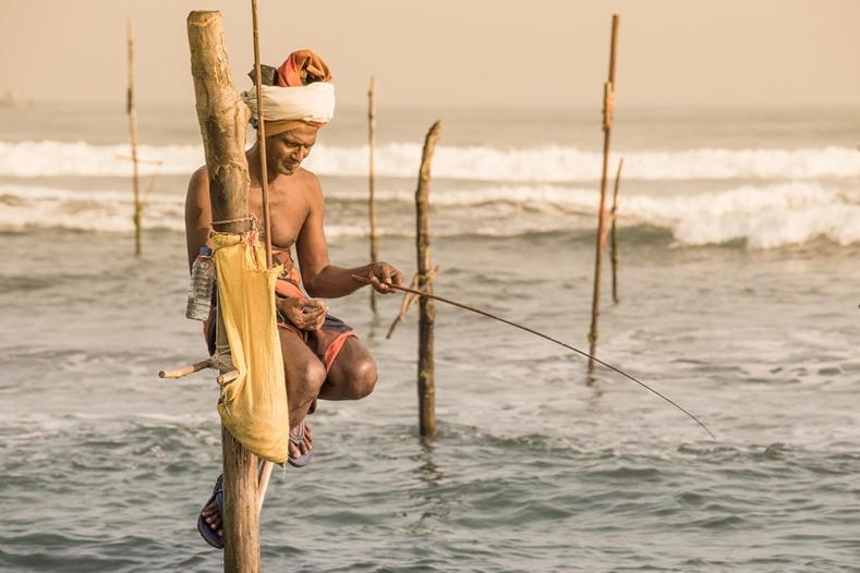 Шри-Ланкагийн өвөрмөц загасчлал