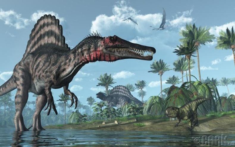 Спинозавр (Spinosaurus)