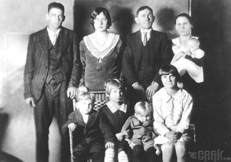Лаусон (Lawson) –ы гэр бүлийн хөрөг