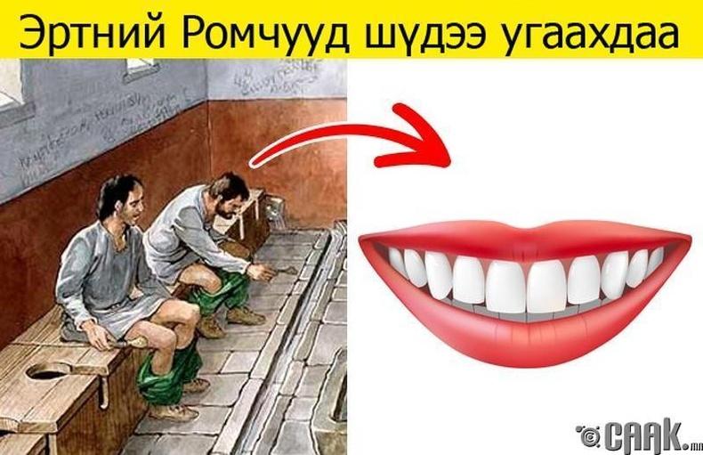 Шүд угаахад шээсийг хэрэглэдэг байжээ