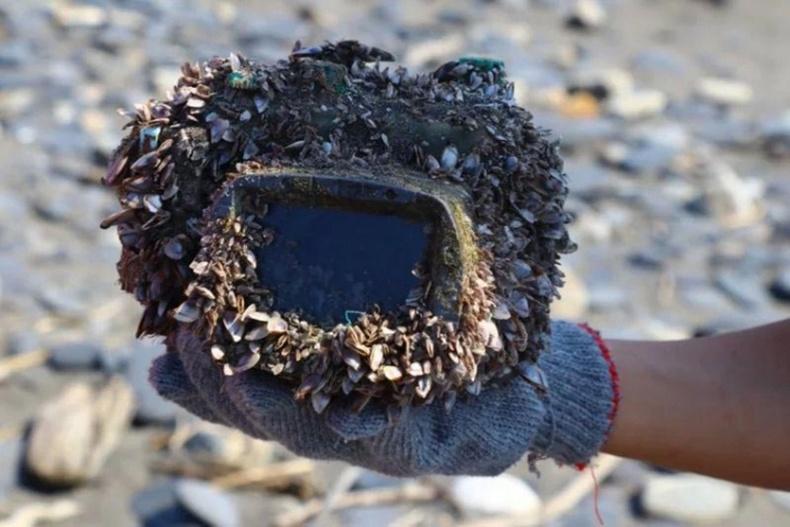 Хоёр жилийн өмнө далайд унасан камерыг олоод нээж үзтэл...