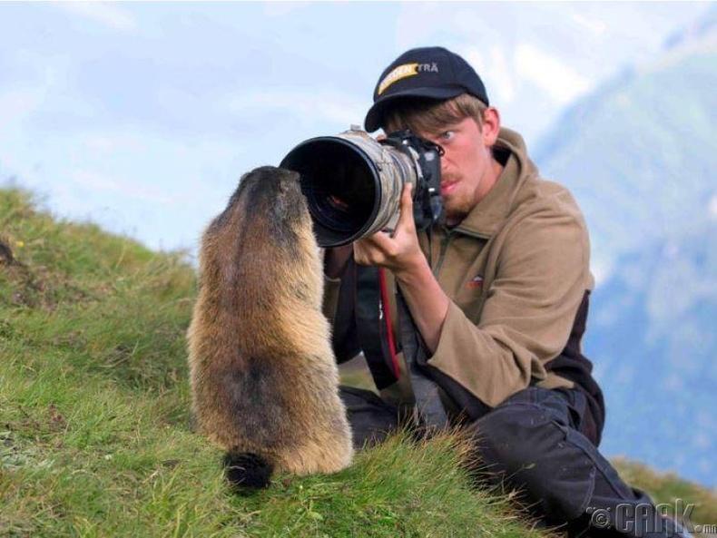 Байгалийн гэрэл зурагчин