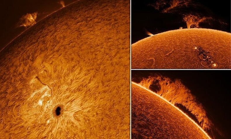 """""""Шинэ хобби"""" - Тэтгэвэртээ гарсан эр нарны гайхалтай зургуудыг буулгажээ"""
