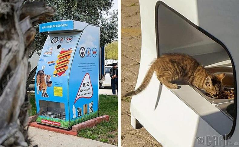 Ашигласан хуванцар савны хогоо хийхэд амьтны тэжээл гаргадаг автомат машин