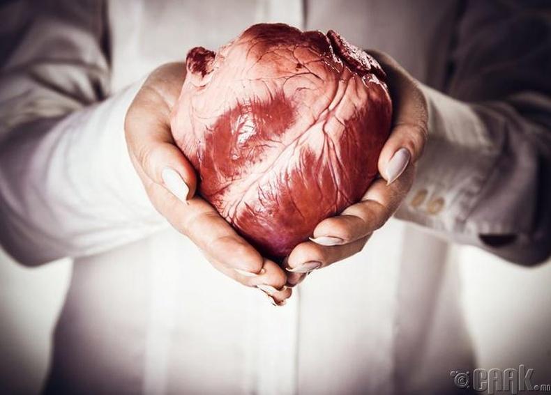 Зүрхний хавдар гэж өвчин яагаад байдаггүй вэ?
