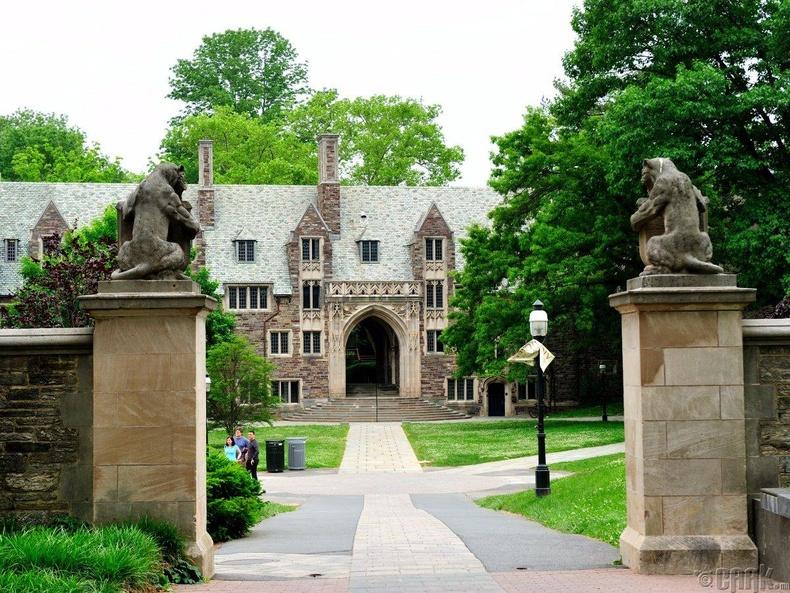 Принстоны их сургууль (Princeton University), 85.6