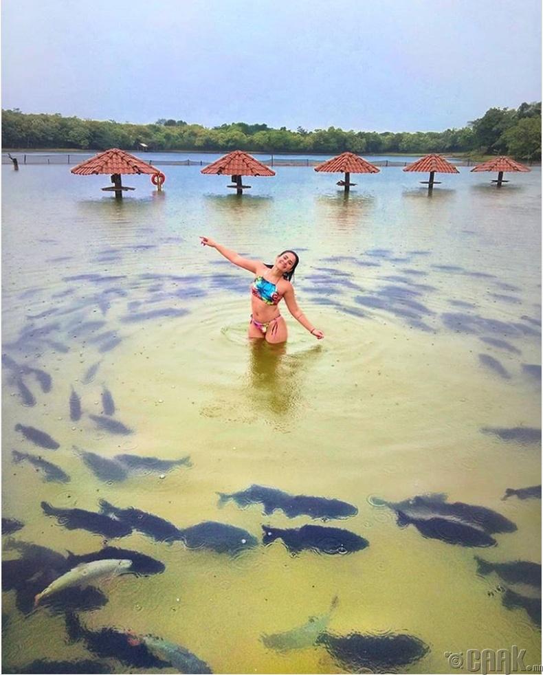 Амазон мөрний ойролцоох амралт