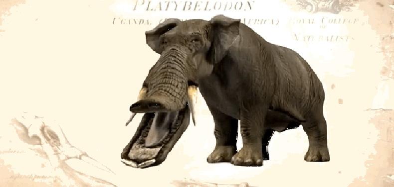 Нугасан амтай, аварга заан (Платибелодон, Platybelodon grangeri)