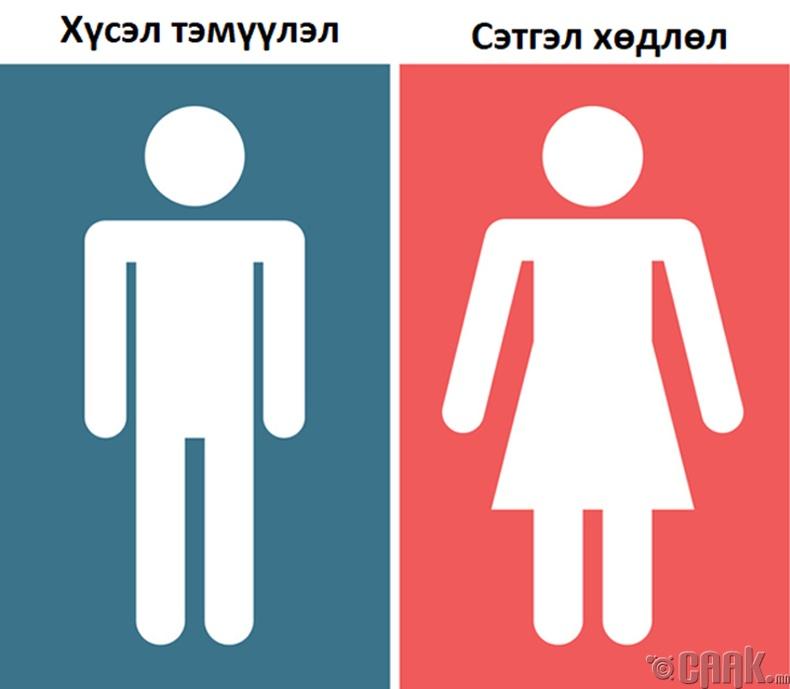 Хэн нь илүү хуурдаг вэ?