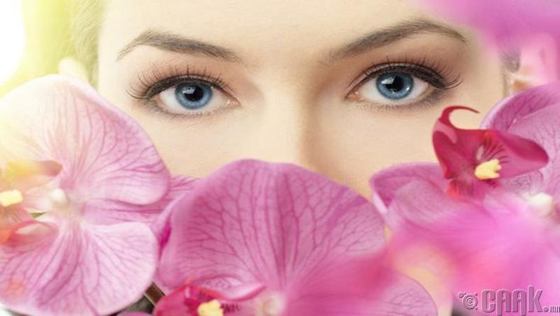 Нүд цэвэрлэнэ