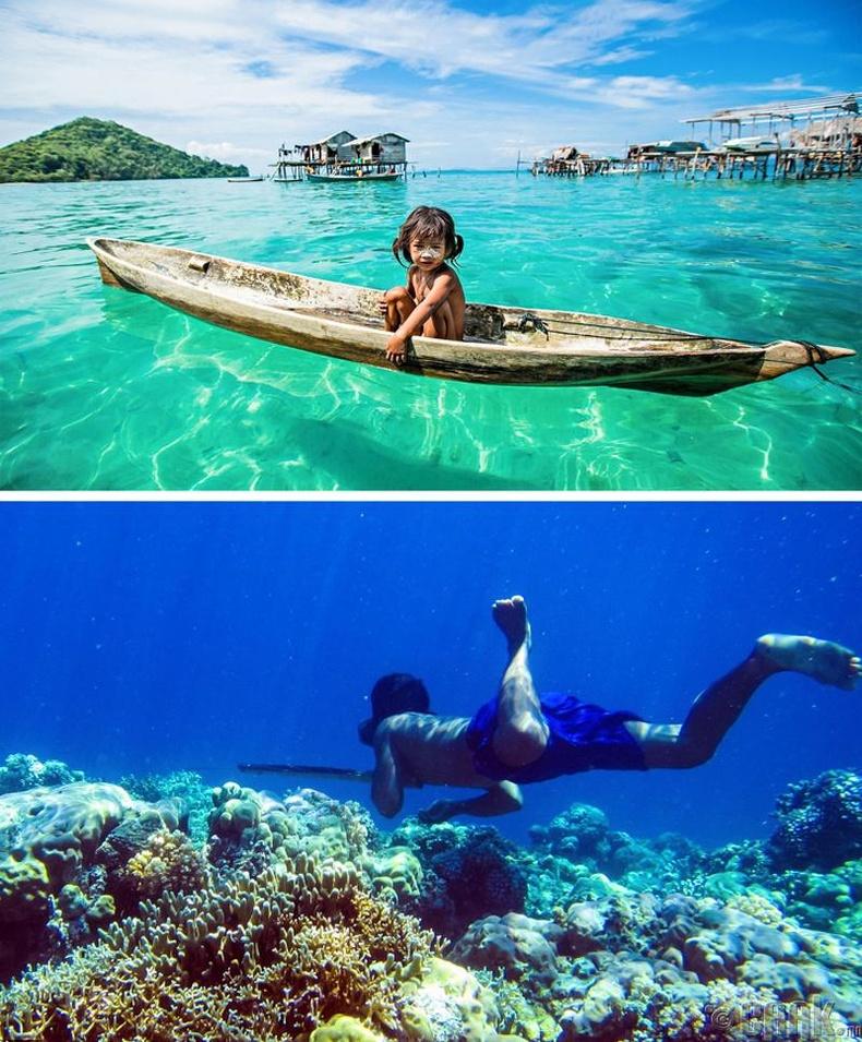 """Зүүн өмнөд Азид усанд шумбадаг """"хүн загас"""" амьдардаг"""