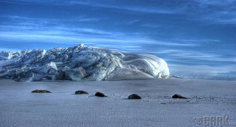 """Макмурдо саунд"" мөсөн тавцан (McMurdo Sound)"