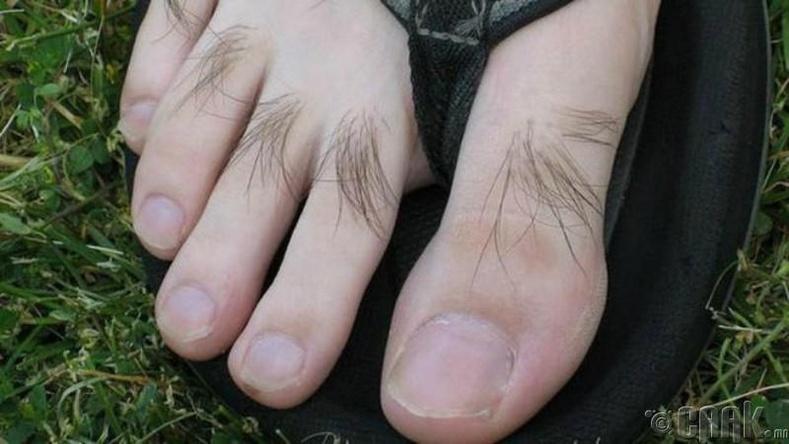 Хөлийн хуруун дээрх үс - Цусны эргэлт сайн байгааг илэрхийлнэ
