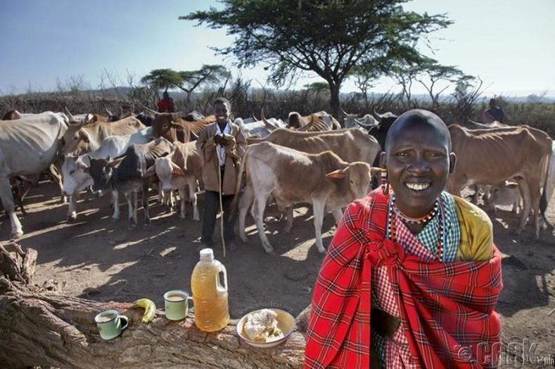 Нулл Кисаруни, Кения - 800 ккал