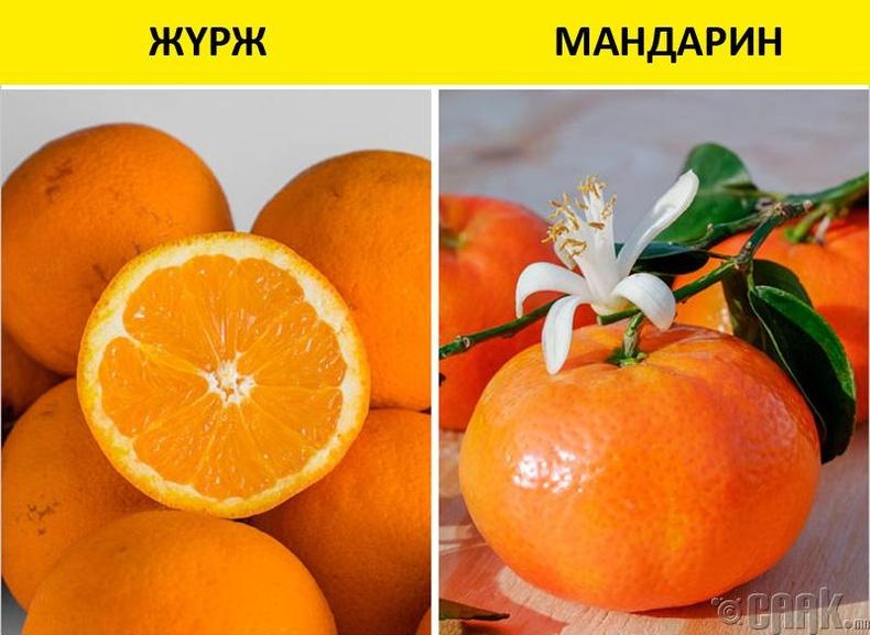 Цитрусын жимснүүд