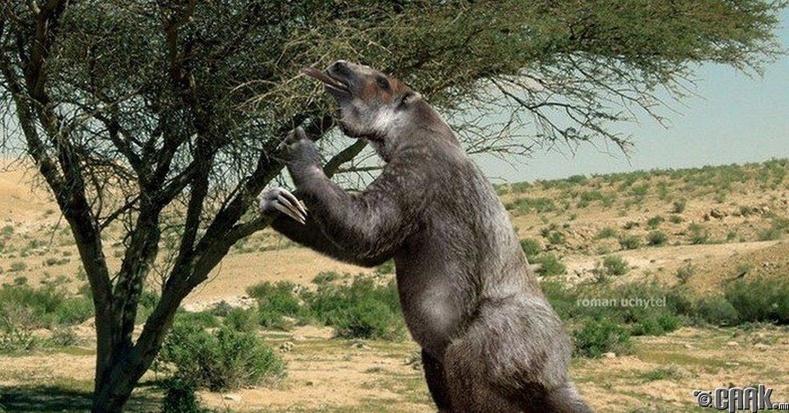 (Мегатерии, Megatherium americanum)