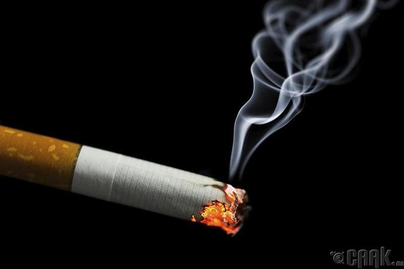 Тамхины утаагаар бургуй тавих