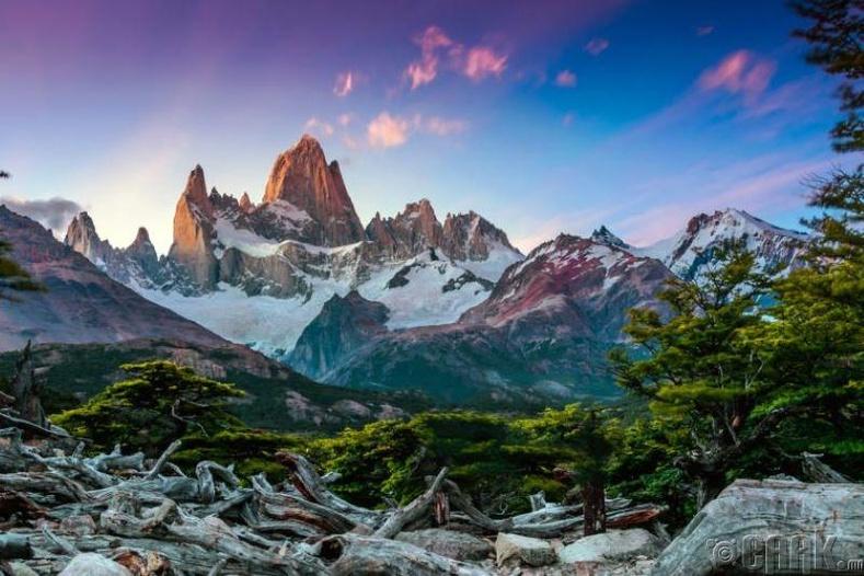 Патагониа (Patagonia)