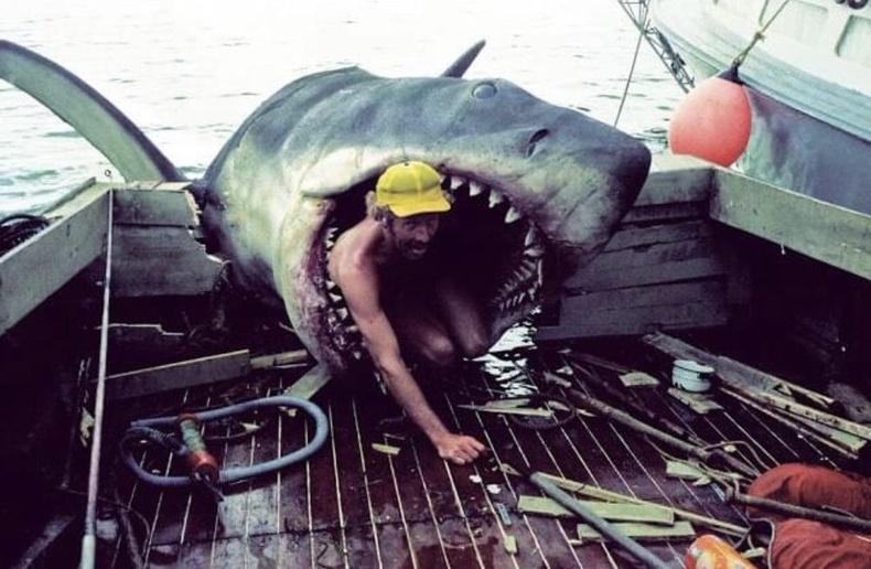 """Jaws"" киноны ард"