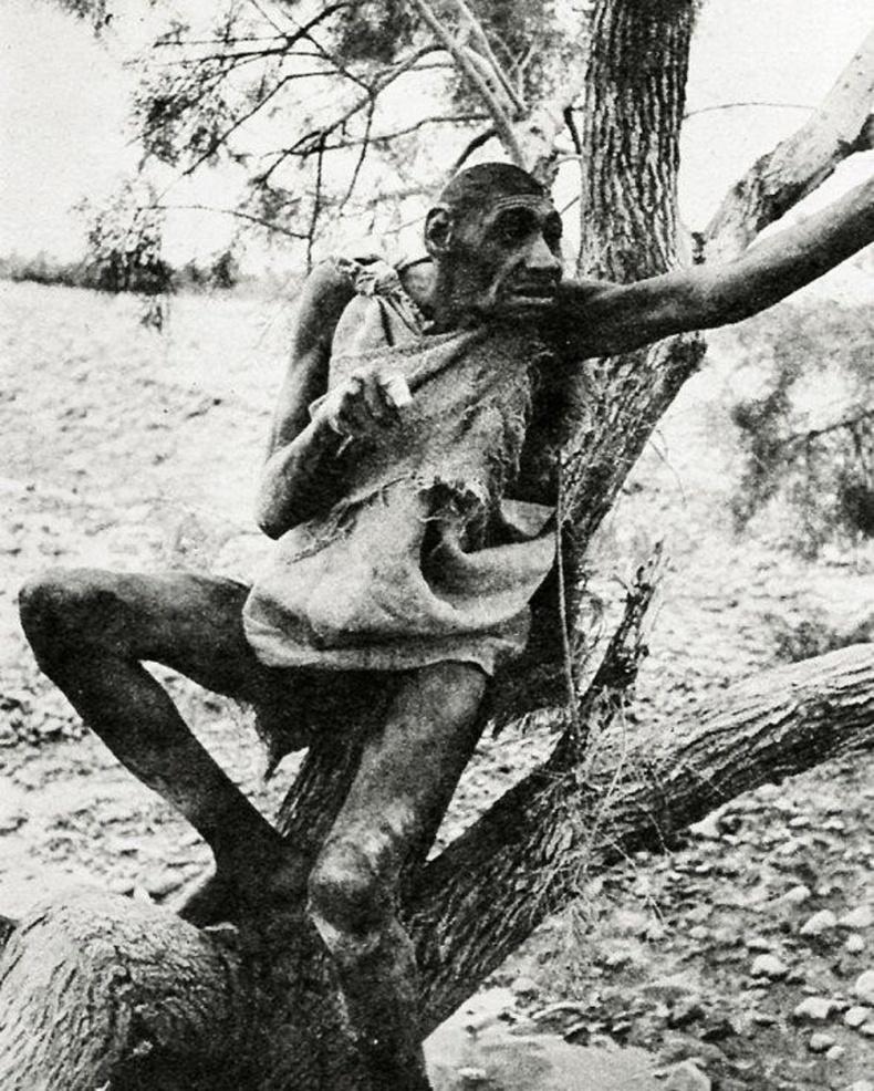 1931 онд Мароккод Аззо Бассоу нэртэй хүн олдсон тухай мэдээ гарч байсан