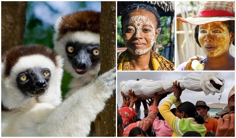 Мадагаскарын арлын тухай бидний мэдэхгүй баримтууд