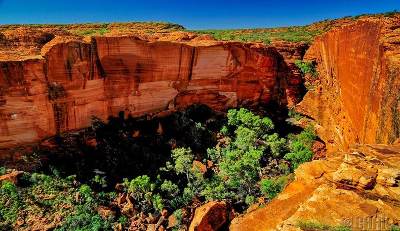"""Австралийн """"Улуру Ката"""" үндэсний цэцэрлэгт хүрээлэн"""