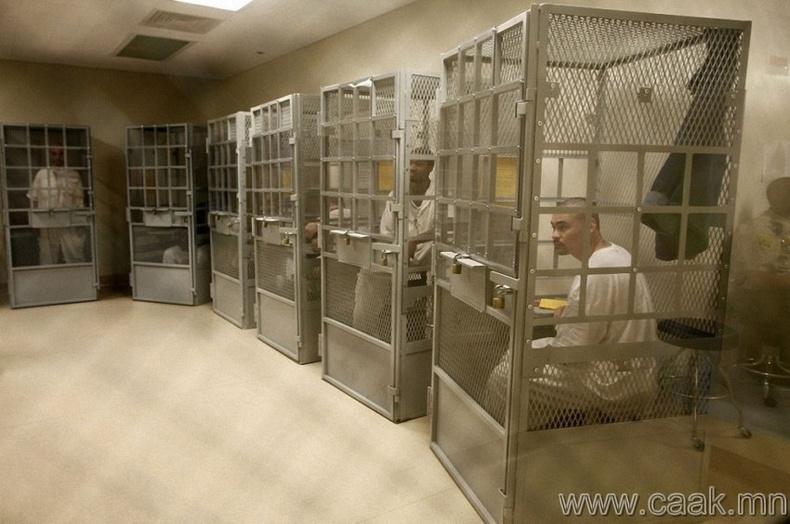 Өдөрт 9.8 сая хүн шоронд хоригддог байна.