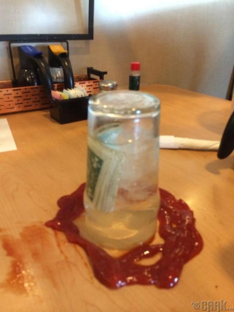 Зөөгчид цайны мөнгө үлдээсэн нь