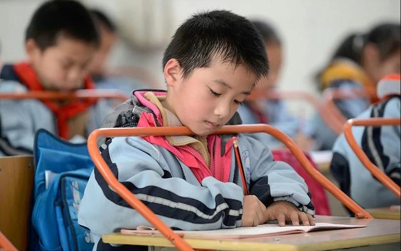 Хятадууд хүүхдээ хэрхэн сургадаг вэ?
