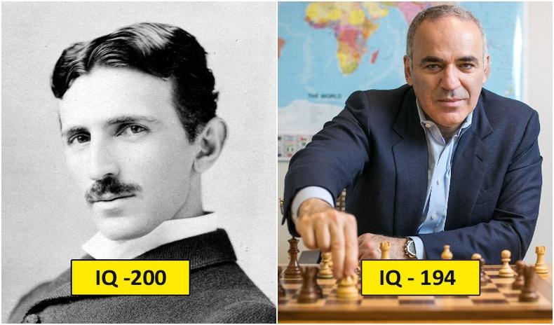 Түүхэн дэх хамгийн өндөр IQ-тай 25 хүн