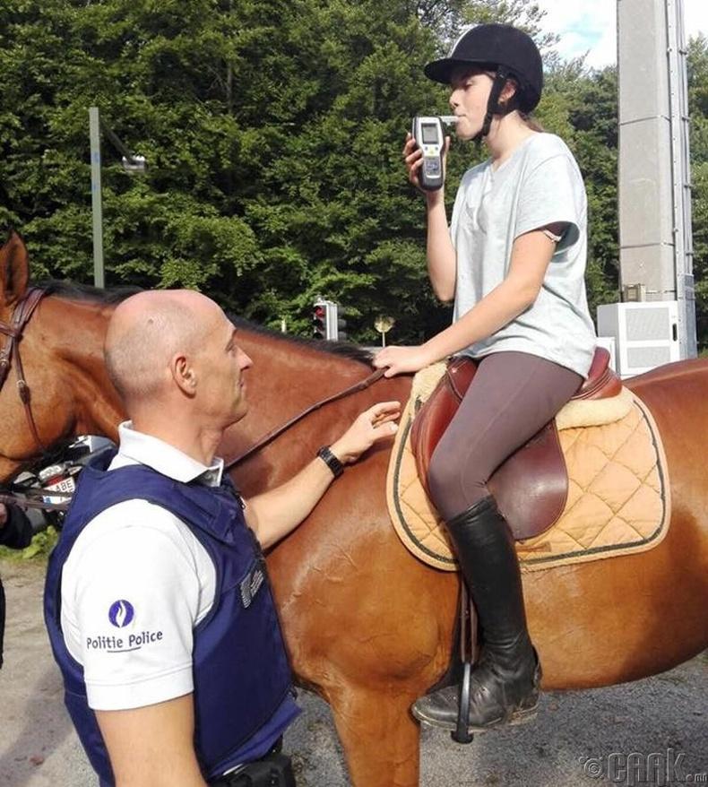Бельги замын цагдаа