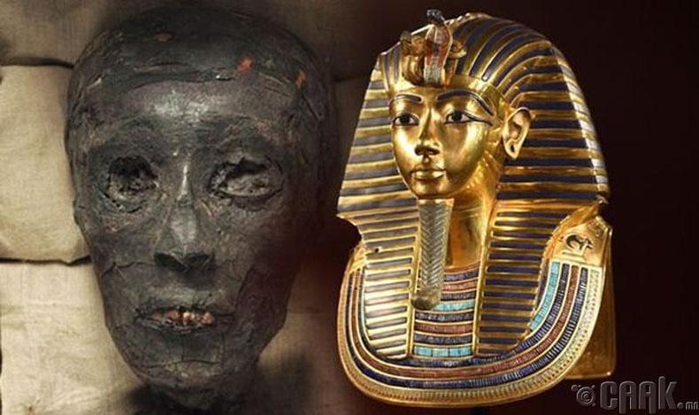 Тутанхамоны эцэг эх нь цус нэгтэй ах дүүс байсан