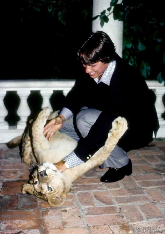 Арнольд Шварцнеггер (Arnold Schwarznegger) арсланг эрхлүүлж байгаа нь - 1977 он