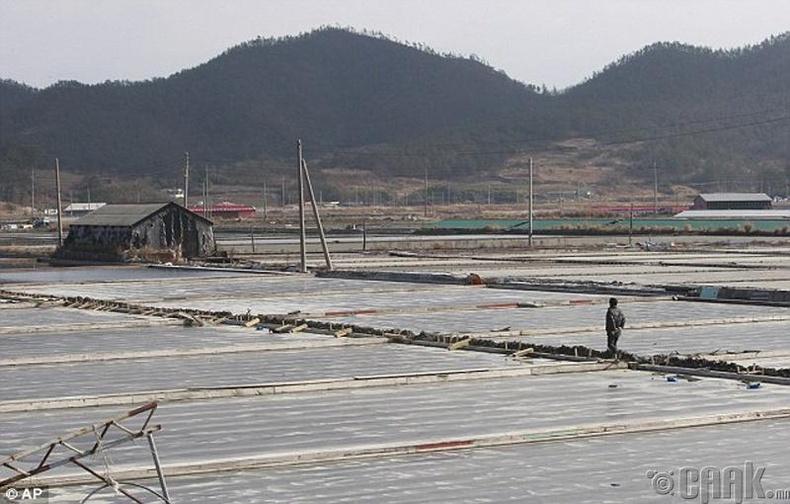 Өмнөд Солонгосын өнөө цагийн боолчлол