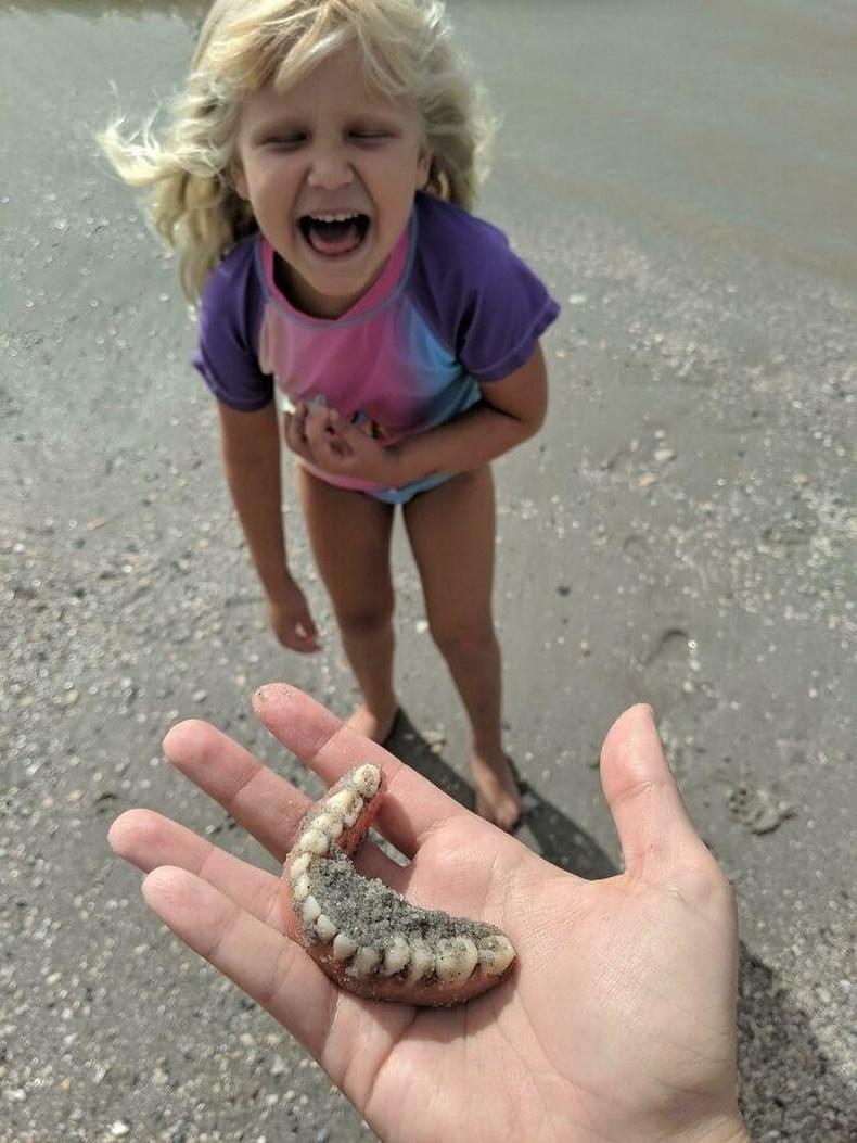 """Аварга загасны шүд олохоор далайн эрэг явахад охин нь """"Шүд олчихлоо"""" гэж баярлатал..."""