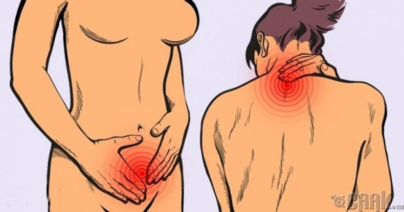Бүх биеийн өвдөлтийн үл тоож болохгүй 12 шинж: