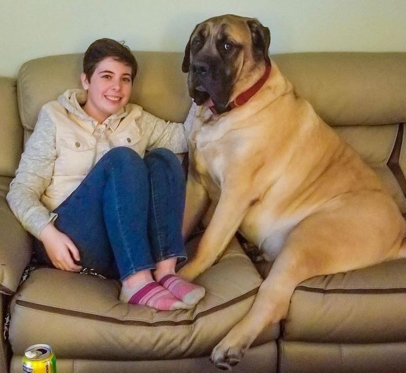 55 кг жинтэй залуу 160 см өндөр охины дэргэд сууж байгаа нь