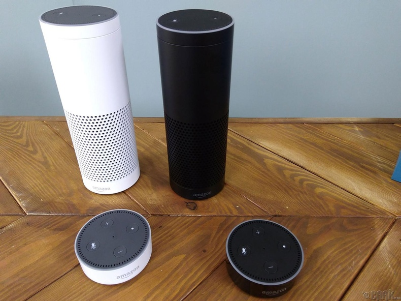 """ Amazon Echo Column"" (2014)"