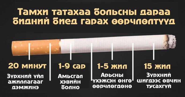 Тамхи татахаа боливол бидний биед юу болох вэ?