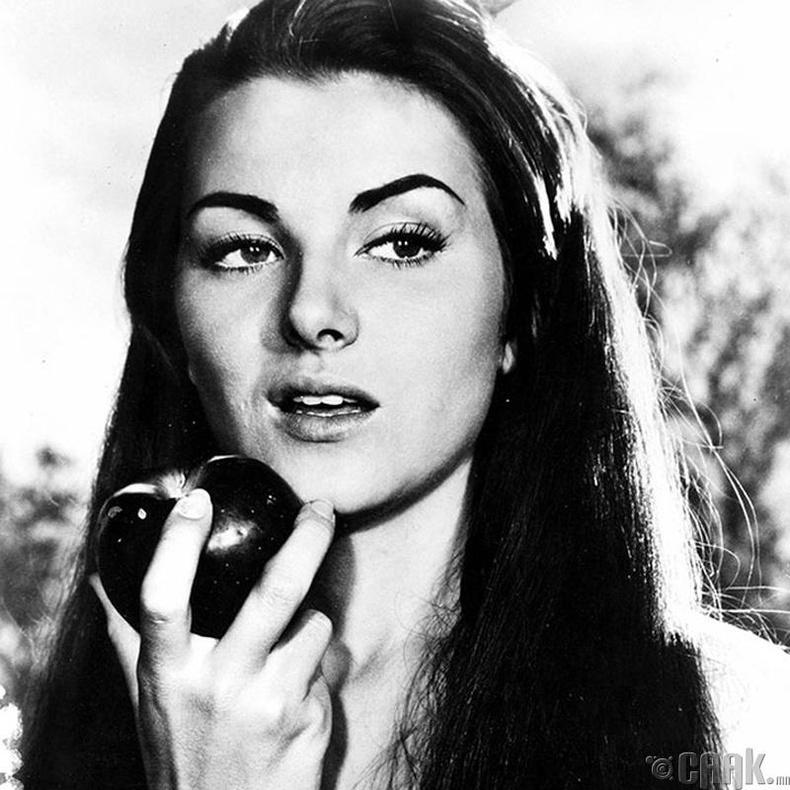 """Miss Universe-1953""-ын ялагч: Францын гоо бүсгүй Кристиан Мартел, 18 настай, 167 см өндөр."