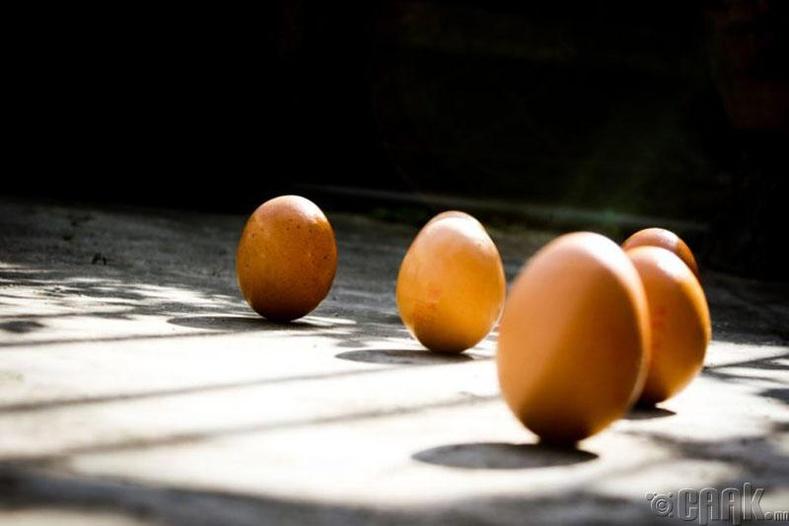 Өндөг тэнцвэрээ олох боломжтой юу?