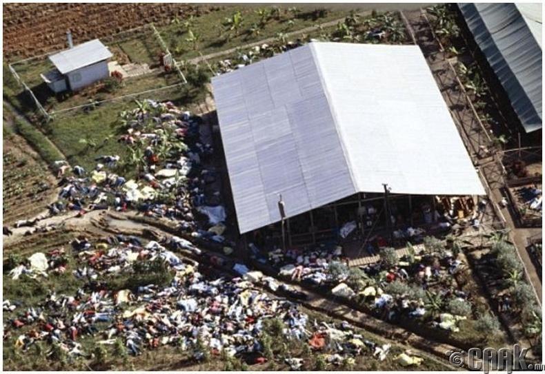 Бонус: 1978 онд Гайана улсын Жонстаунд гарсан шашны аллага