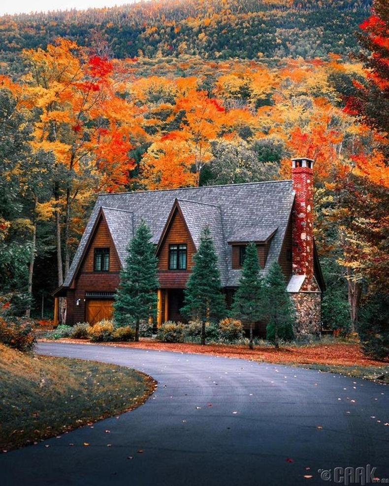 Нью Хэмпшир, АНУ