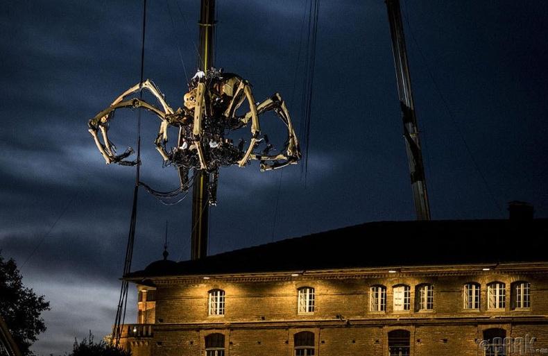 Тус аварга аалзны загварыг анх 2008 онд Их Британийн Ливепүүл хотод танилцуулж байжээ